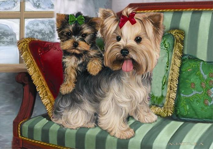 Собачки от художницы Michele Amatrula. (699x489, 62Kb)