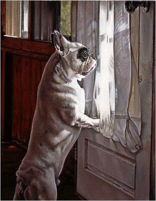 Собачки от художницы Michele Amatrula. (542x700, 281Kb)