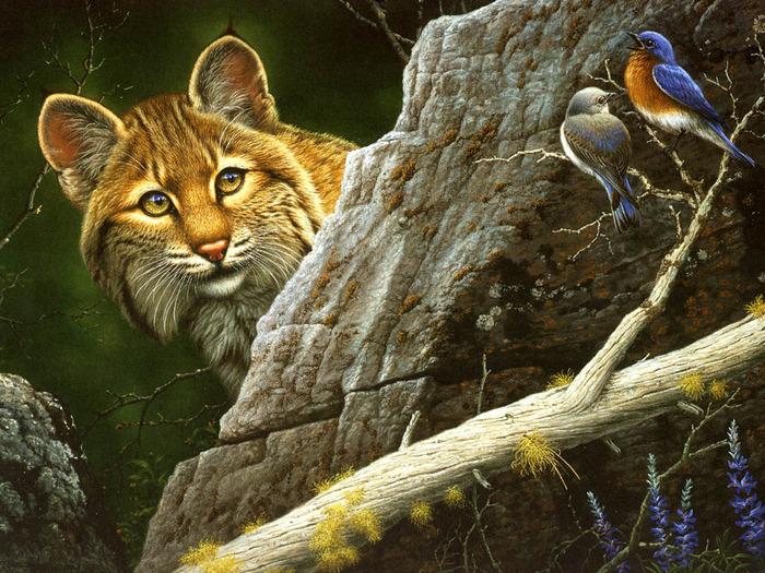 Красивые животные рисунки