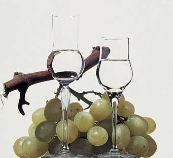 Граппа - национальный итальянский напиток, а на самом деле - простая...