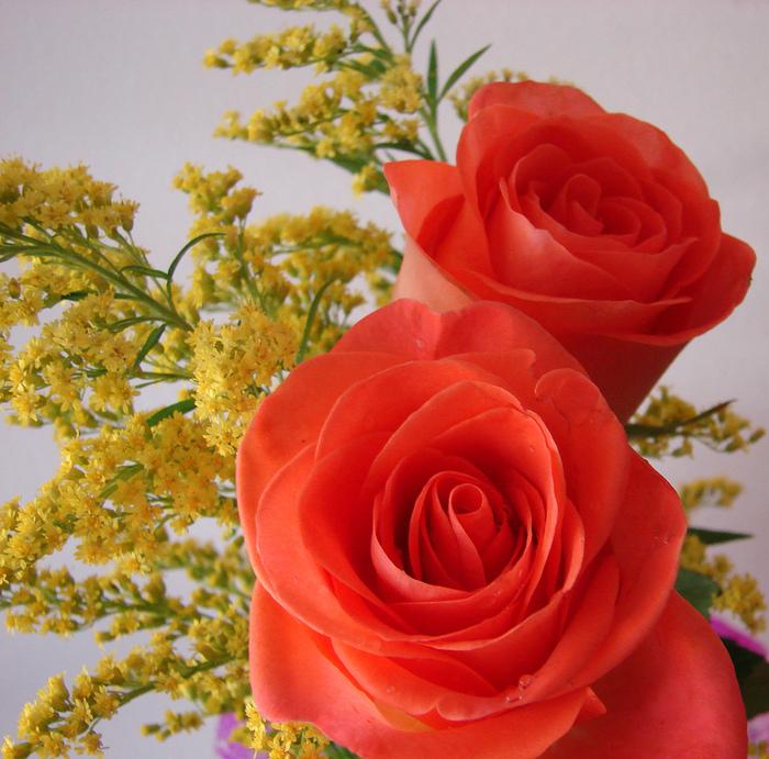 Юбилеем надписи, картинки прекрасной даме цветы