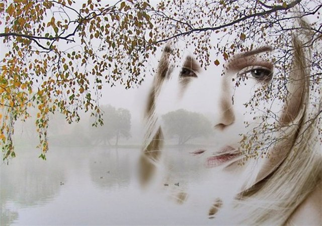 http://img0.liveinternet.ru/images/attach/c/1/74/786/74786666_31_bereza.jpg