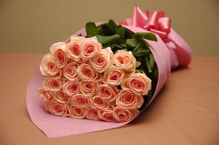 http://img0.liveinternet.ru/images/attach/c/10/109/698/109698998_aqua_baby__light_pink_rose.jpg