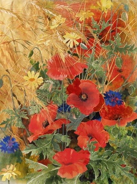 Cornfield-flowers (447x600, 211Kb)