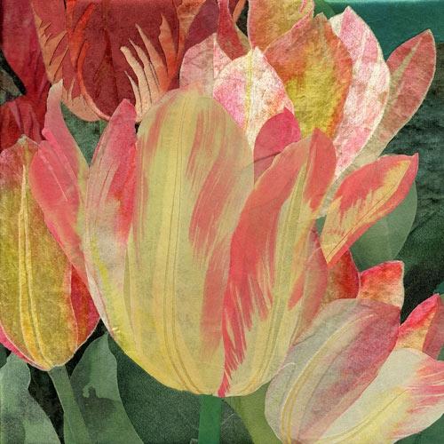 Georgette-Tulips-SQ500 (500x500, 185Kb)