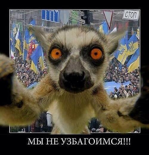 Путин попал в ловушку украина применила ноу хау ведения современных войн