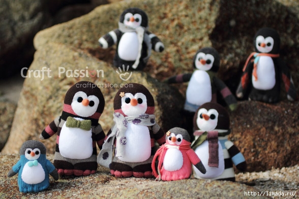 sock-penguin-group-photo (588x392, 172Kb)