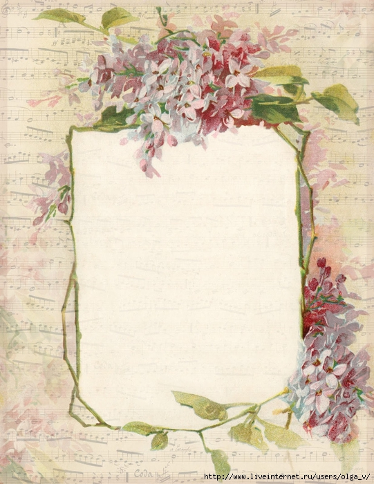 Lilacs and French sheet music ~ 8.5x11 ~ lilac-n-lavender (541x700, 305Kb)
