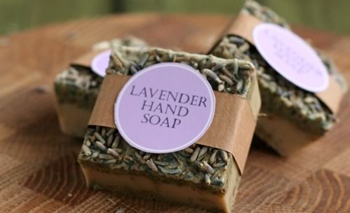 lavender-soap-recipe-finished-500x304px (500x304, 99Kb)
