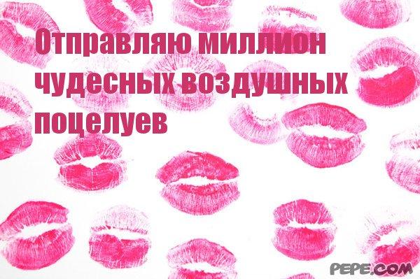 встретил картинки с тысячью поцелуев вводится
