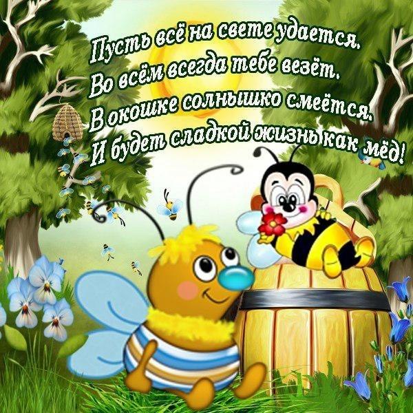 поздравление как мед шушарах ленсоветовском