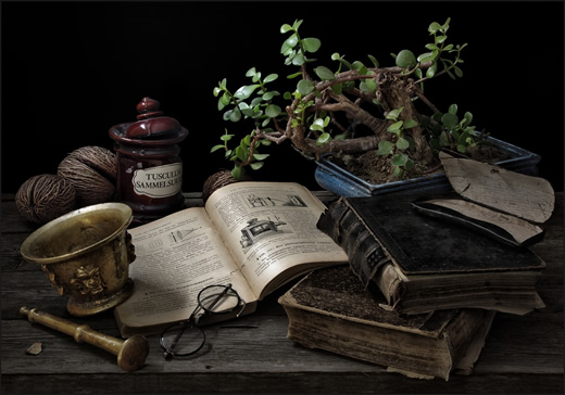 book-stilllife-21072012-1 (520x364, 70Kb)