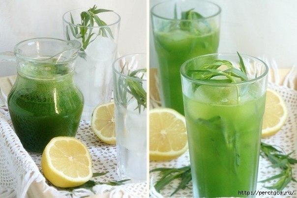 Рецепт приготовления домашнего лимонада тархун рецепты приготовления языка в сметанном соусе