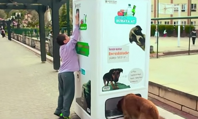 7359960-R3L8T8D-650-stray-dog-food-vending-machine-recycling-pugedon-4 (650x393, 132Kb)