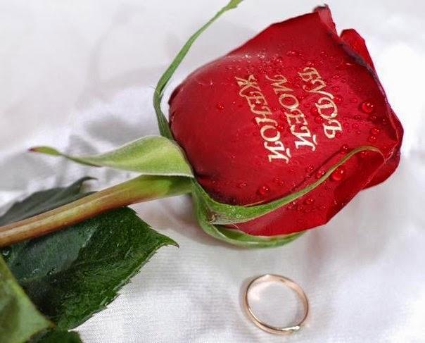 Картинки с надписью хочу розу