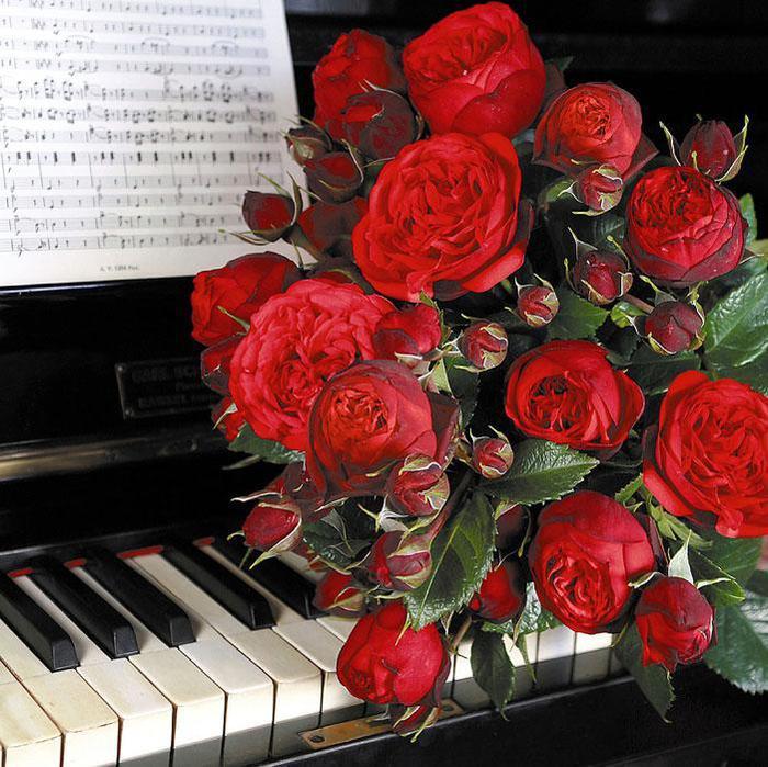 красивые картинки с днем рождения с музыкой