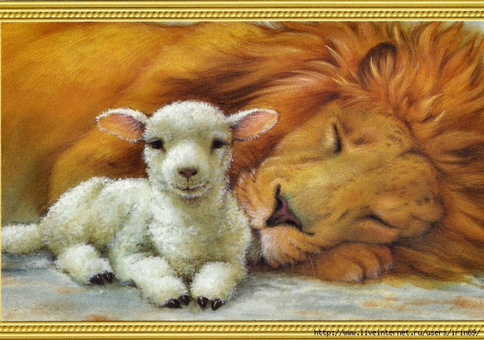 135127__lion-and-lamb_p (700x492, 348Kb)