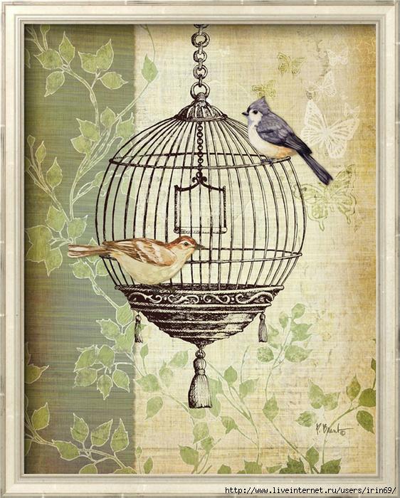 Изображение, птицы в клетке открытка