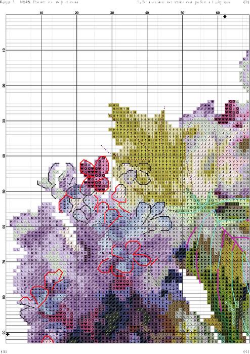 m545 соцветия гортензии схема