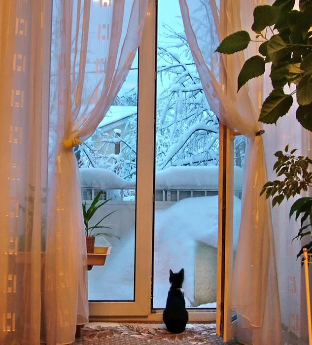 Балкон – если вы видите во сне влюбленную пару, которая долго прощается на балконе, вам предстоит разрыв с вашим(ей) возлюбленным(ой) по вине жизненных обстоятельств.