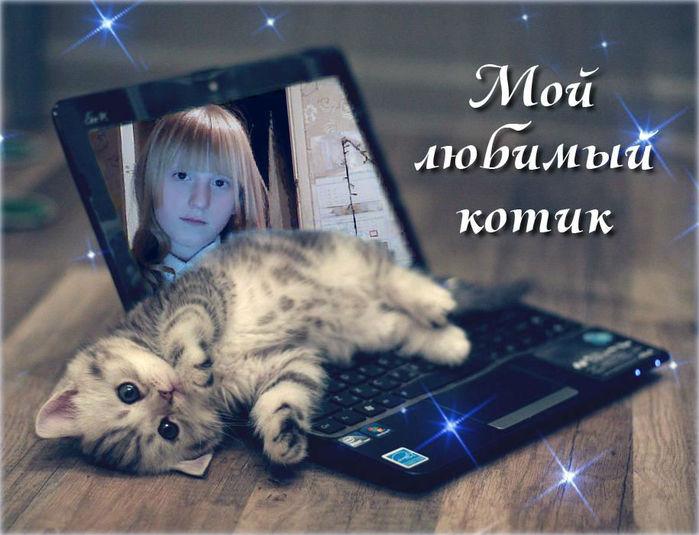 Картинки, открытка доброе утро мой любимый котик