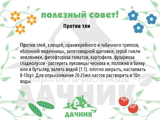 https://img0.liveinternet.ru/images/attach/c/11/128/714/128714908_3621707_sovet_39.jpg