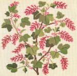 Превью 34_Flowering_Currant (600x597, 575Kb)