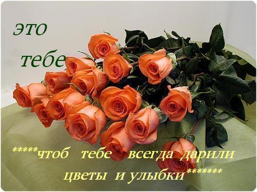 63025639_905808b37062 (500x375, 39 Kb)
