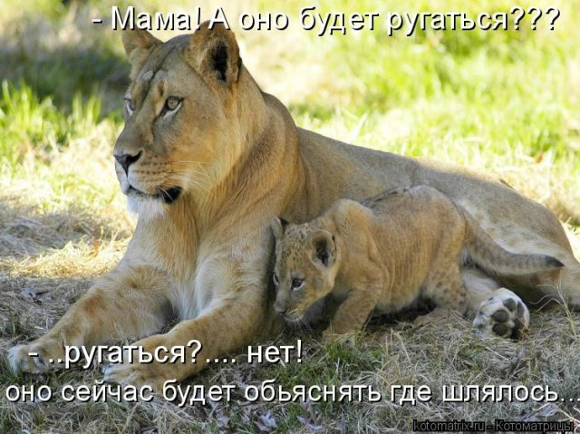 https://img0.liveinternet.ru/images/attach/c/2//64/421/64421408_4700b45048e7efe7f1cdd9a9120cdbcb.jpg