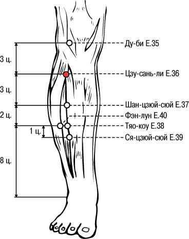 Майкл рид теч точечный массаж коленных суставов коленный сустав болит что делать