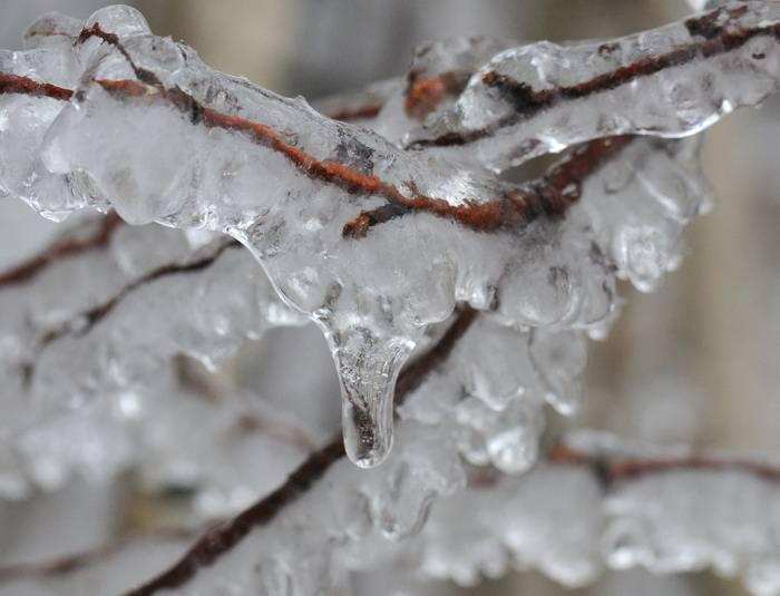 демотиваторы ледяной дождь фото названию