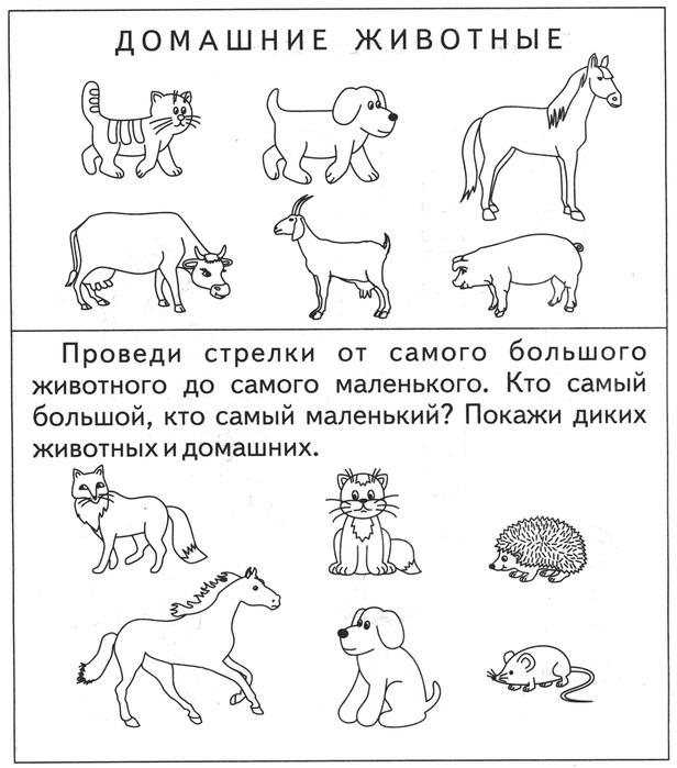 картинки задания детям по теме домашние животные последних его сделок