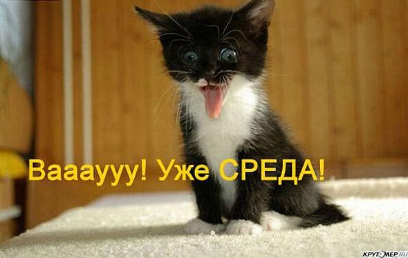 http://img0.liveinternet.ru/images/attach/c/2/73/112/73112136_313912182.jpg