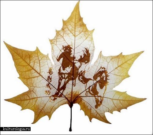leaf-carving5 (500x441, 49Kb)