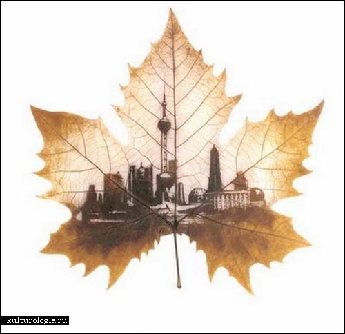 leaf-carving7 (500x484, 41Kb)