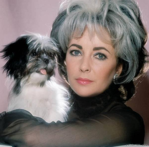 elizabeth_taylor_photo_13 (600x593, 37Kb)