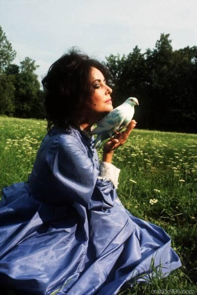 elizabeth_taylor_photo_33 (401x600, 39Kb)
