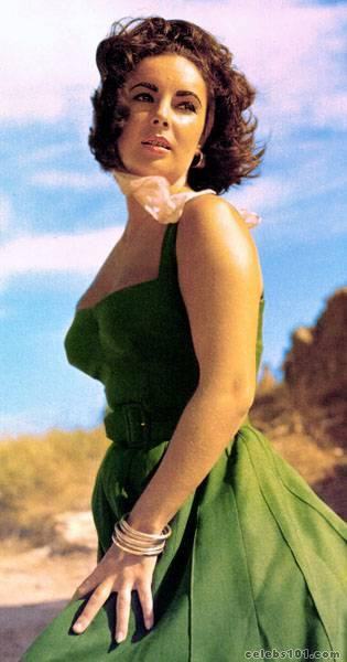 elizabeth_taylor_photo_89 (315x600, 30Kb)