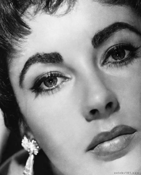 elizabeth_taylor_photo_130 (485x600, 33Kb)