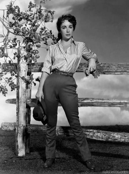 elizabeth_taylor_photo_168 (446x600, 48Kb)