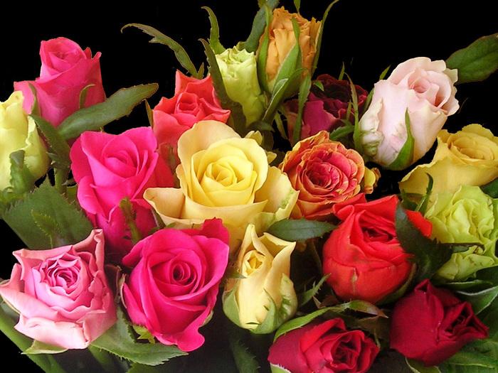 Цветы букет фото розы
