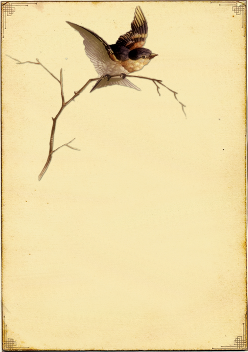 Винтажные птички (клипарт). которую собрала в последнее...