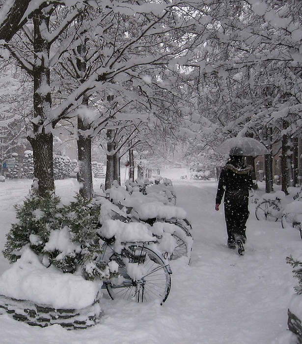 И белою весною растают вновь снега