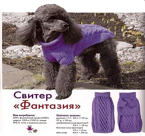 Вязание собачкам свитера на спицах 185