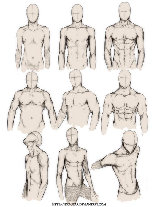 _body_type_study__by_jinx_star-d4n0r6t (529x700, 165Kb)