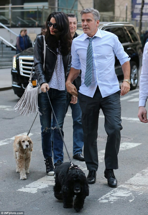277FA06400000578-3036224-Family_visit_George_Clooney_welcomed_wife_Amal_and_their_pet_coc-a-7_1428881314607 (483x700, 346Kb)