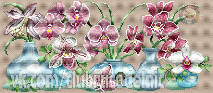 Orchids in vase (700x307, 359Kb)