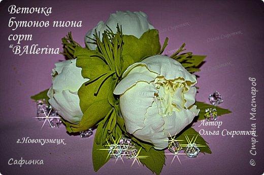1430013459_Ol_ga_Suyrotyukpionovaya_vetochka (520x346, 46Kb)