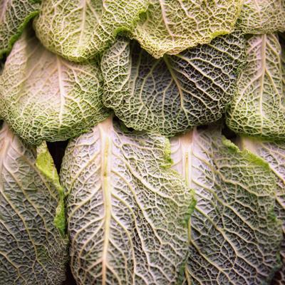 23_cabbage-detail-72-400 (400x400, 255Kb)