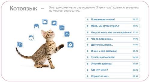 Скачать на кошачий 1. 11 для android.